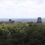 Dschungel Pyramiden II